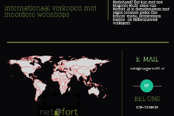 Magento Multistore Infographic (Netfort)