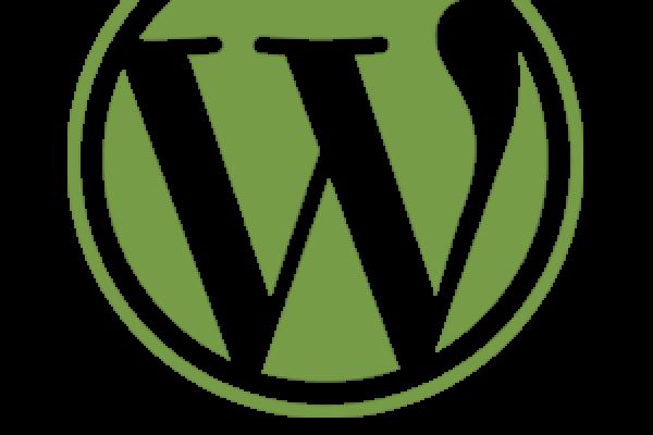 Wordpress webdesign en SEO van Netfort Kampen